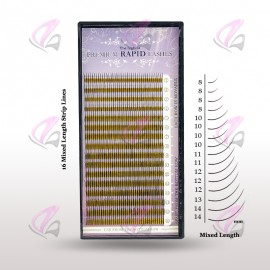 Rapid Mixed Lash (Case)
