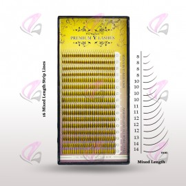 Y Mixed Lash (Case)